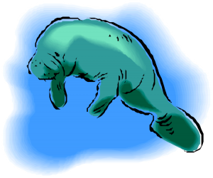 jpg freeuse download Clipart clip art free. Manatee vector