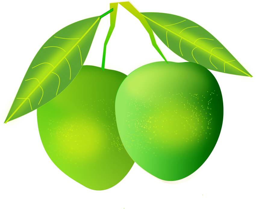 image freeuse download Mango clipart. Png free images toppng