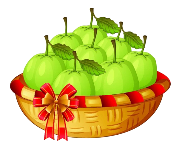 picture free Mango Basket Drawing Illustration