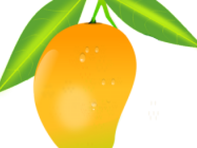 svg free stock Mango clipart border. Cliparts x carwad net.