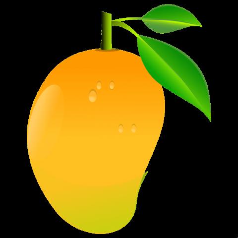 clip transparent mango png