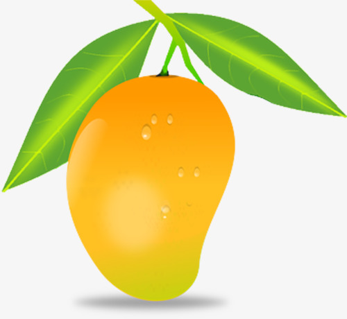 banner freeuse library Mango clipart original. Png yellow with green.