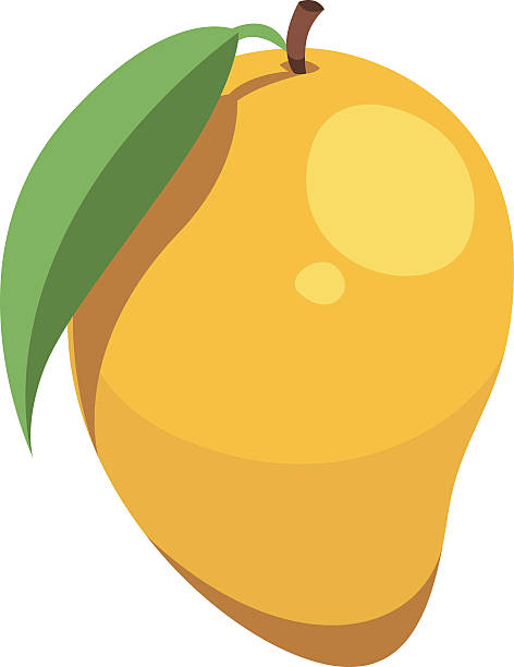clip library stock Collection of free arangoes. Mango clipart original.