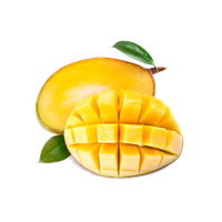 picture download Mango clipart original. Download free png photo.