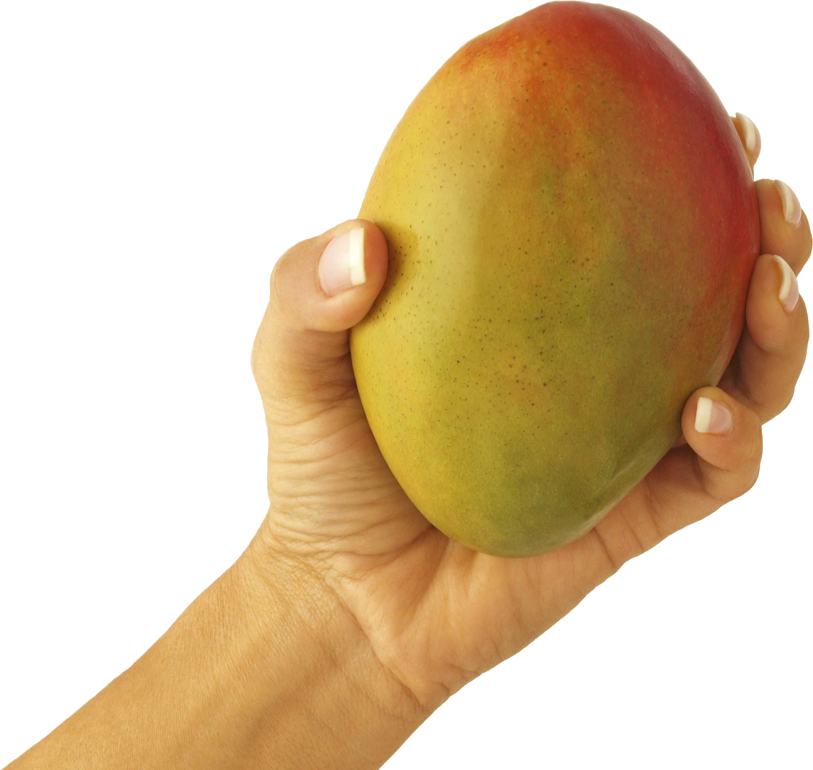 png royalty free stock Mango in hand PNG image