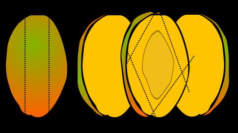 graphic royalty free stock mango clipart slice #80780691