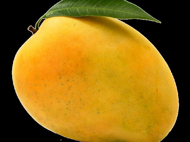 banner download Mango Cliparts Free Download Clip Art