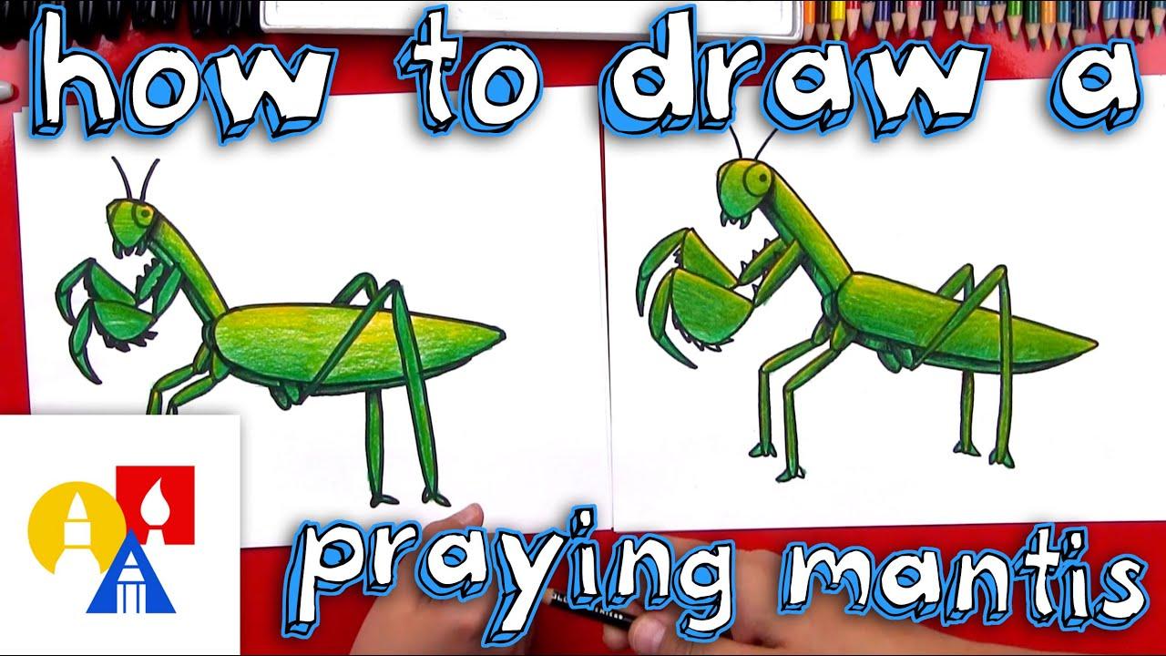 jpg transparent download How To Draw A Praying Mantis
