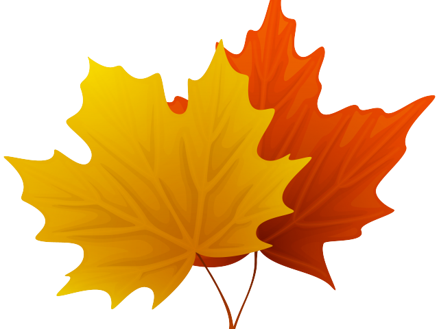 png black and white library Maple clipart. Leaf free on dumielauxepices.