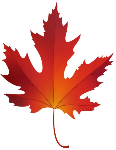 banner free stock Maple clipart acorn leaf. Autumn png clip art