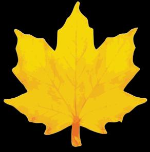 banner stock Orange Maple Leaf Clip Art at Clker