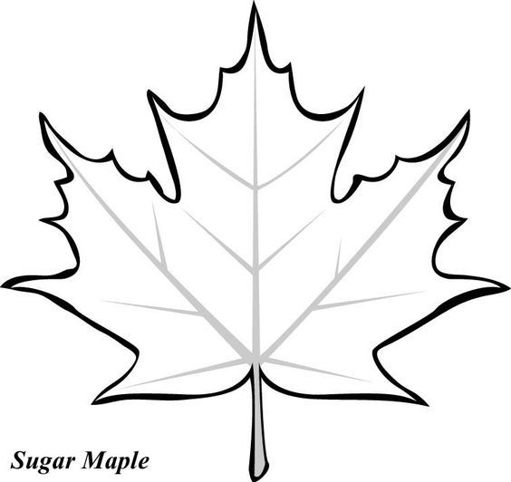 svg library Maple clipart leaf pattern. Leaves template and clip.