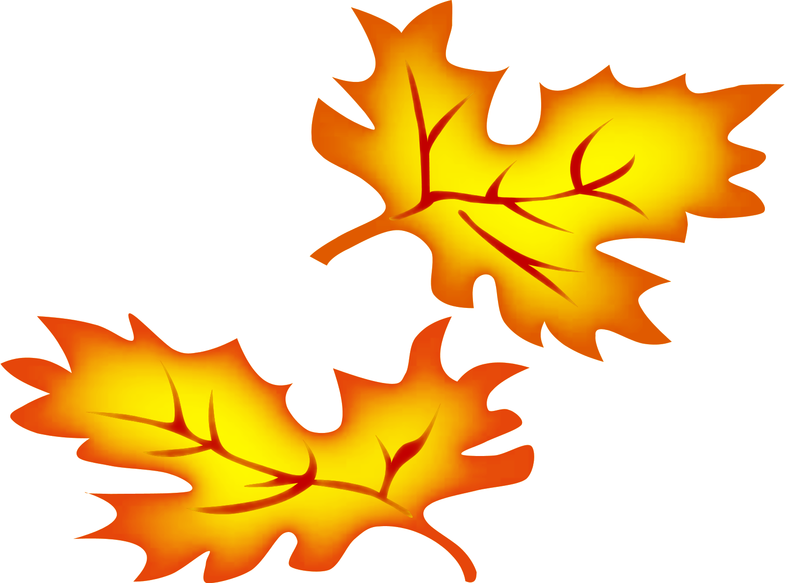 image library Maple leaf stylized . Free fall borders clipart