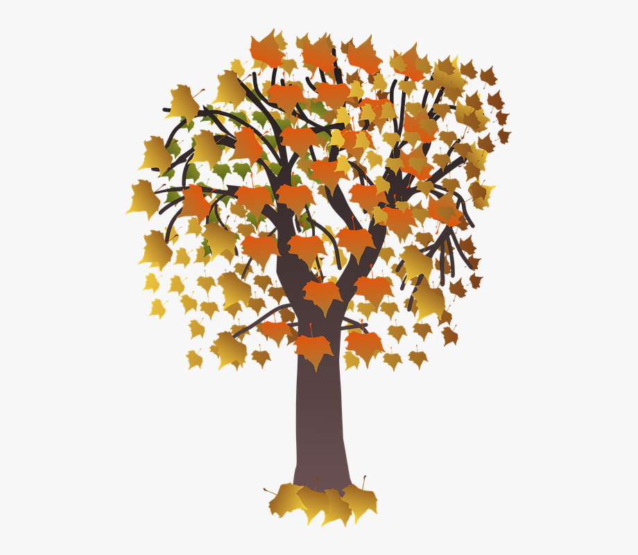 vector freeuse stock Foliage brown fall leaves. Maple clipart tree autumn.
