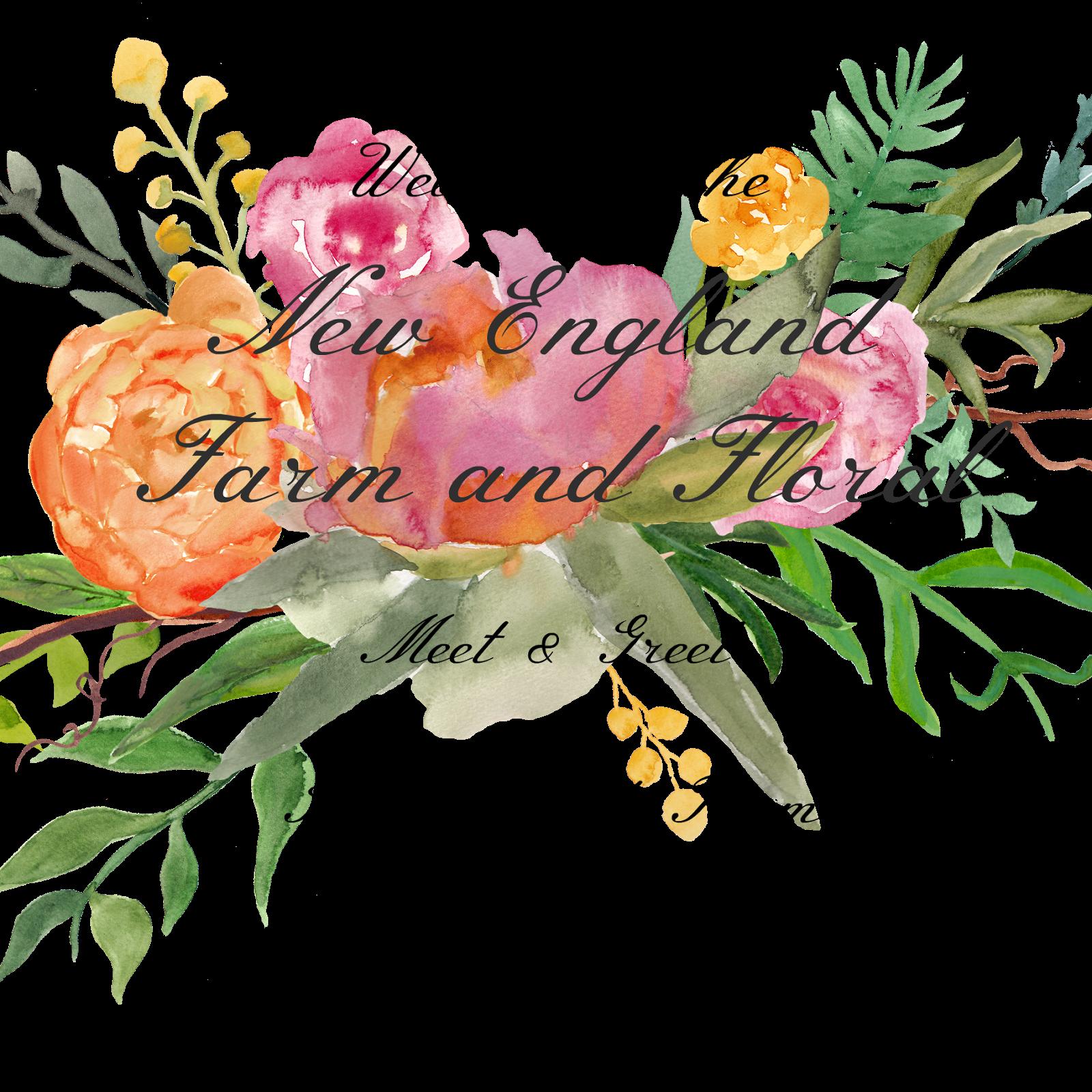 jpg transparent stock March clipart friendship flower. Deborah jean s dandelion.