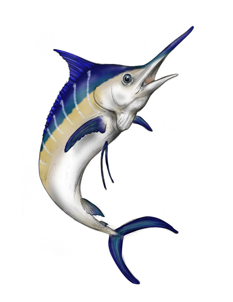 picture free library Free cliparts download clip. Marlin clipart.