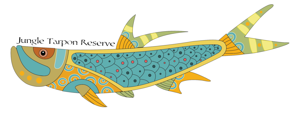png freeuse library Marlin clipart sawfish. Jungle tarpon reserve costa.