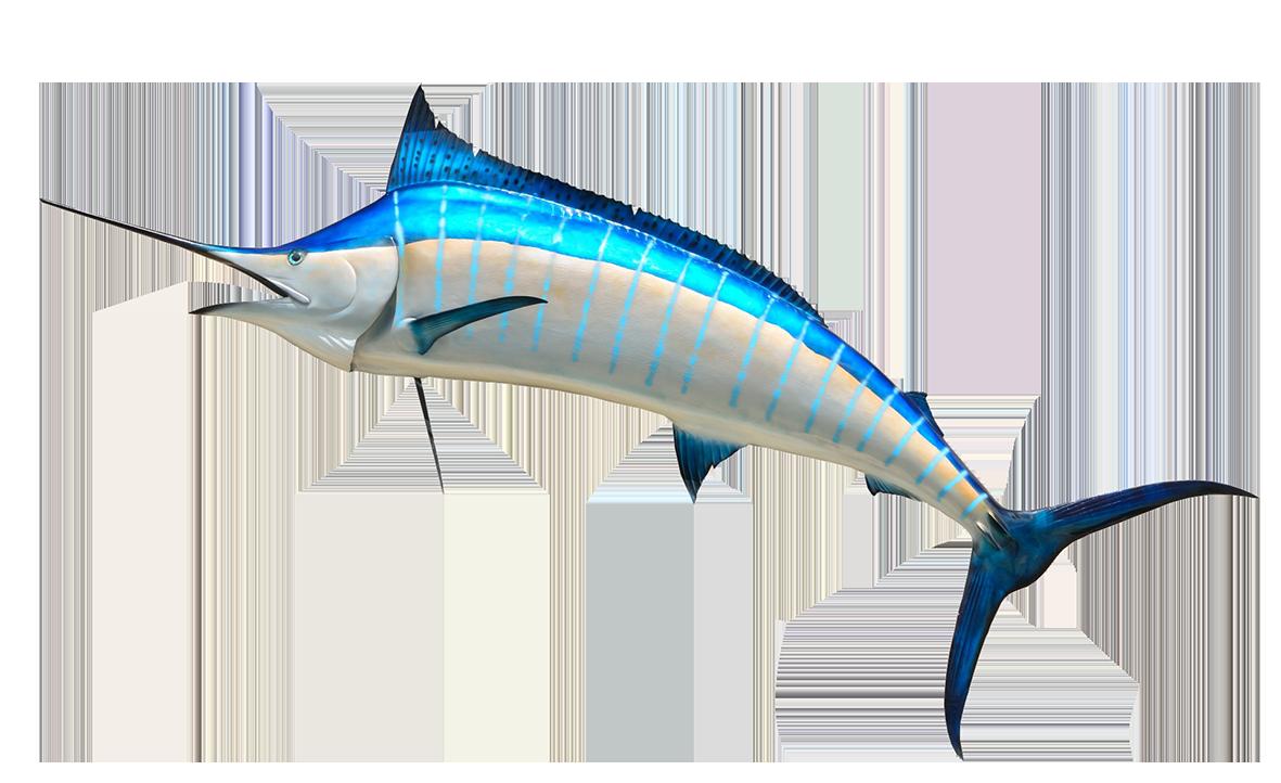 clip royalty free library Swordfish clip art free. Marlin clipart xiphias.