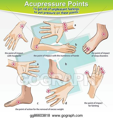 svg free library Vector illustration massage points. Therapy clipart acupressure