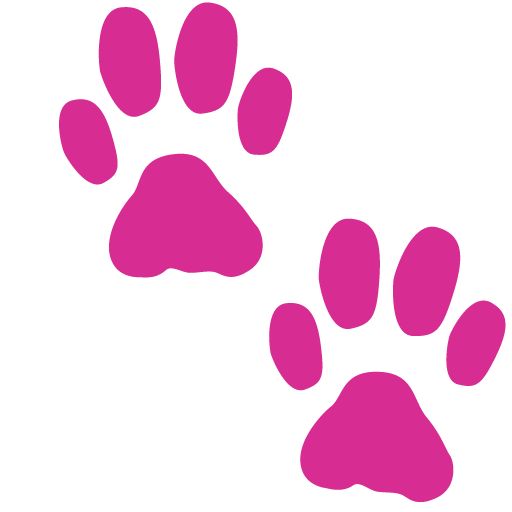 banner free stock The ripple for cats. Mat clipart pink rug.