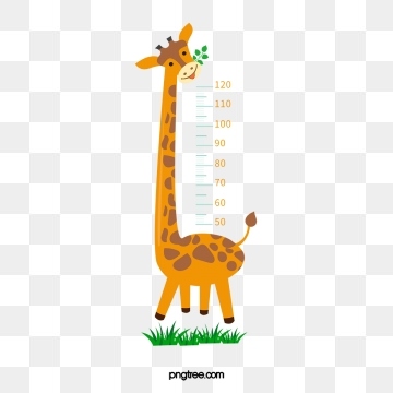 clip art Measure clipart hight. Height png images vector.