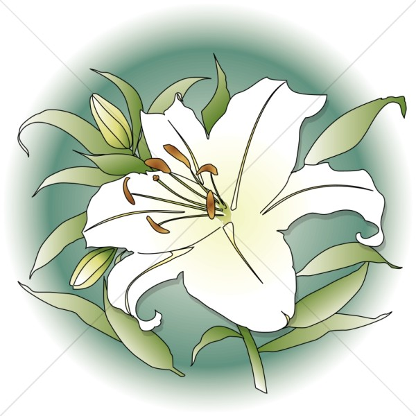 transparent Church image flowers . Memorial clipart altar flower.