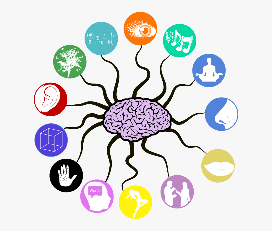 banner freeuse library Memory clipart. Musical brain other senses