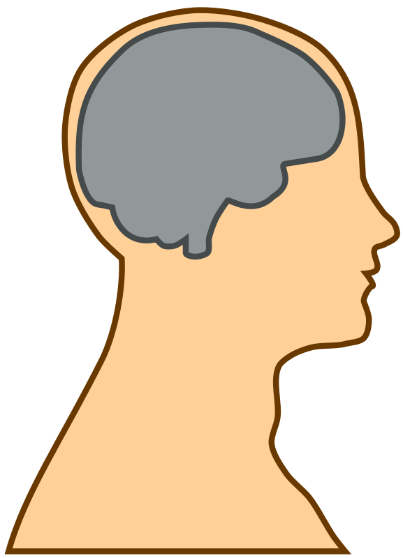 jpg freeuse stock Mental clipart brain head. Download and backup your.