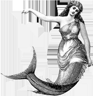 image freeuse library mermaid drawing