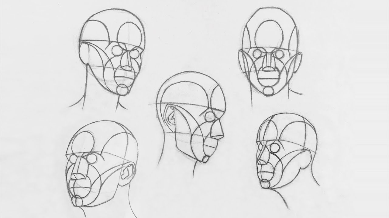 clip art royalty free download How to draw head. Method drawing.