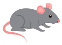 graphic transparent stock Mice clipart. Free mouse clip art.