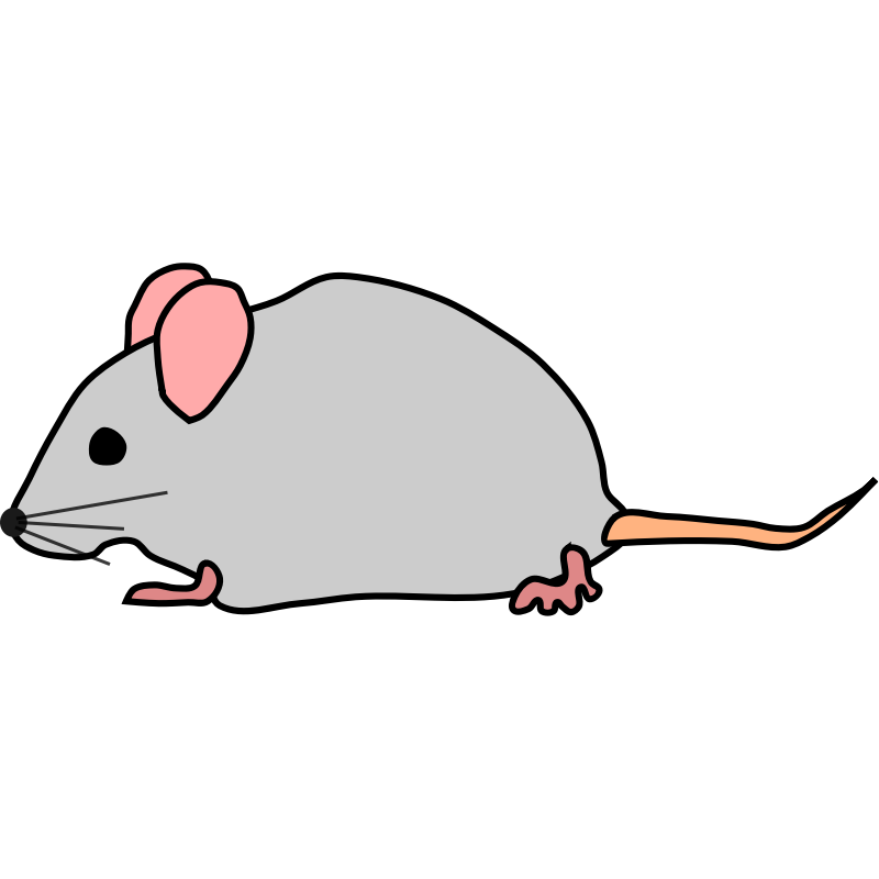 svg royalty free library Pic of mouse. Mice clipart easy.