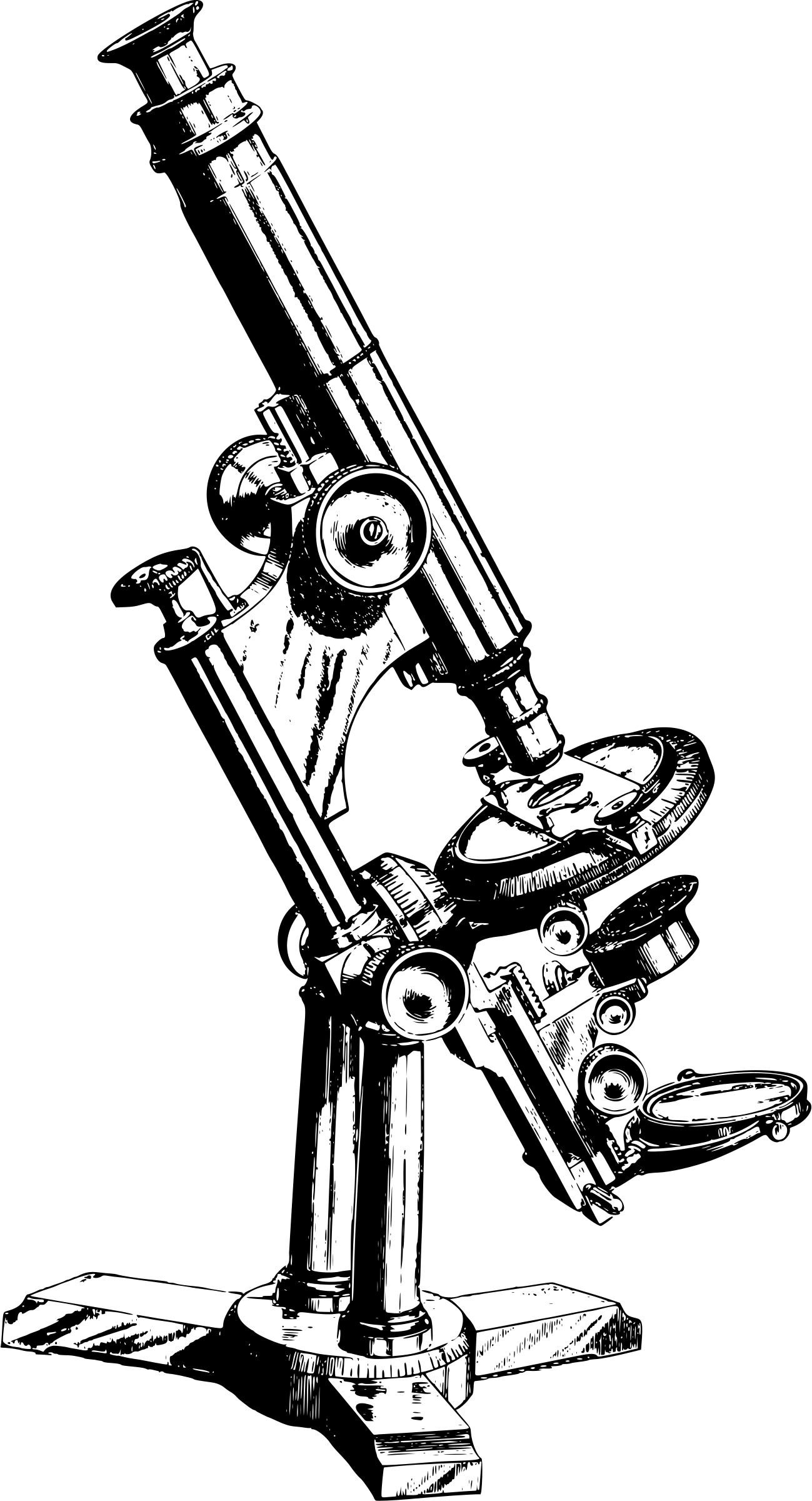 clip art free stock Boxing drawing vintage. Binocular microscope at getdrawings
