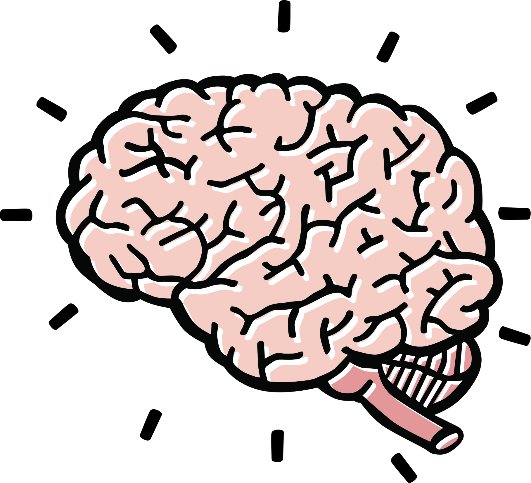 transparent stock Free thinking brain cliparts. Mind clipart.