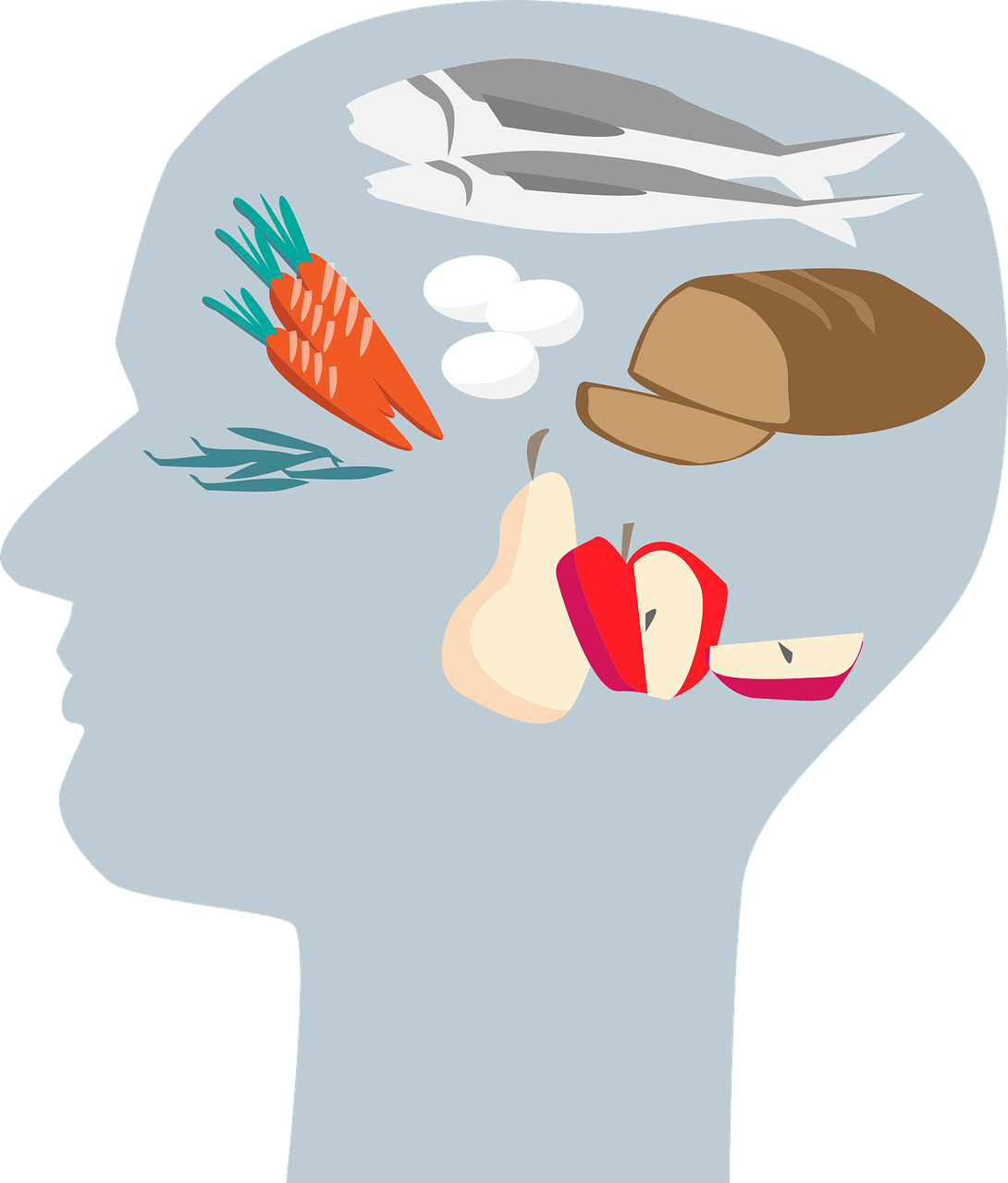 image freeuse stock nutrition for brain power