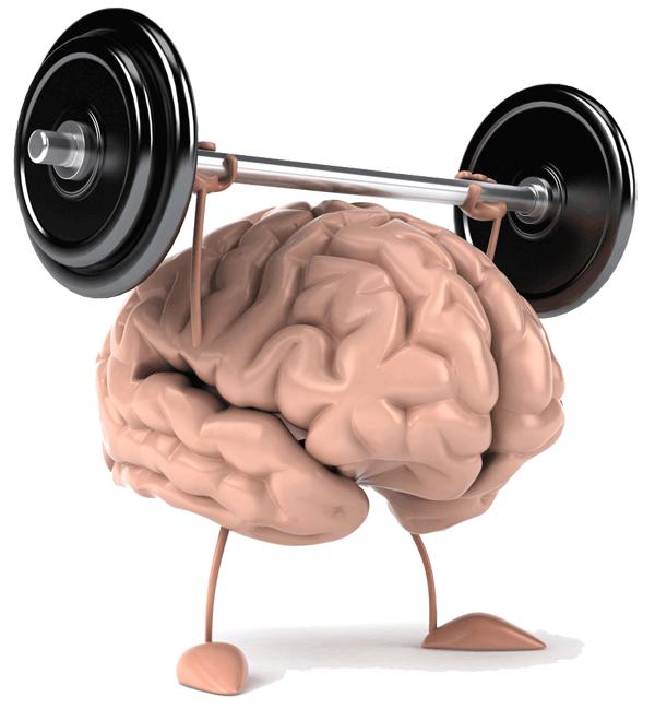 clipart stock Mind clipart brainpower. Brain power brainy matter.