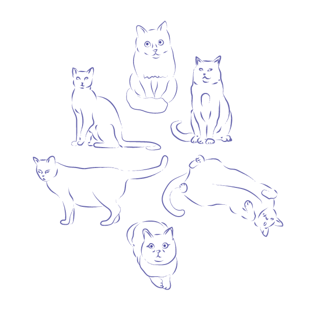 jpg free library Minimal cat practice sketches from before I knew this sub existed