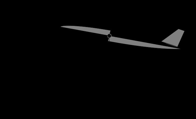 vector royalty free stock Flight dynamics