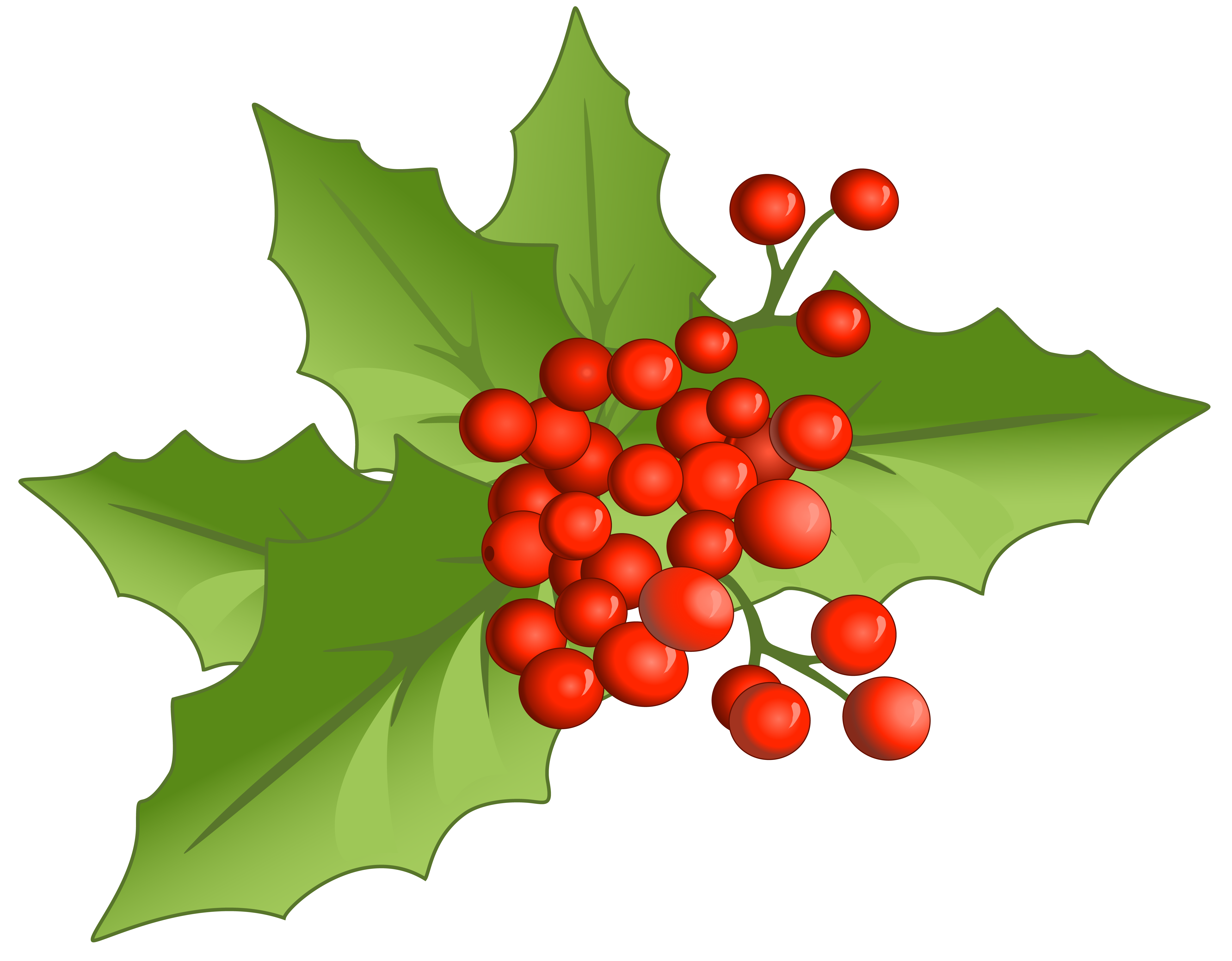 clip freeuse download Christmas large png gallery. Mistletoe clipart