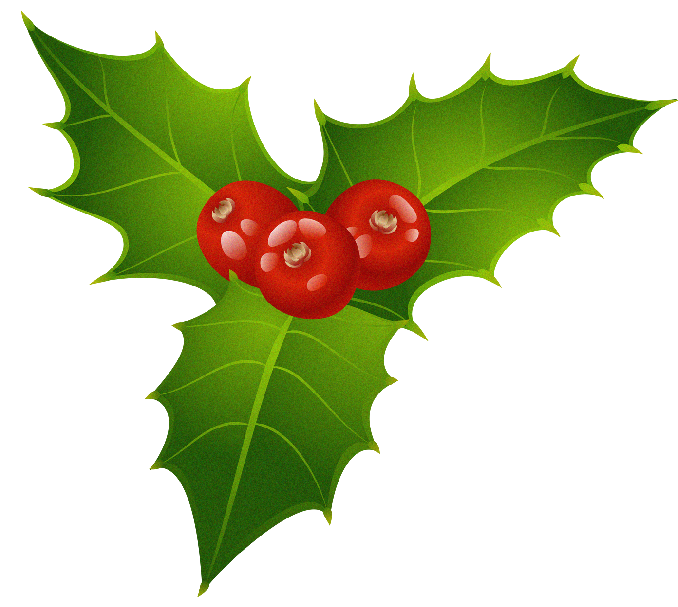 graphic transparent library Mistletoe clipart. Free cliparts download clip