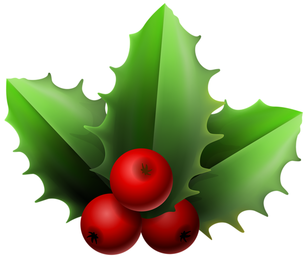 png transparent stock Mistletoe clipart. Christmas png image pinterest.