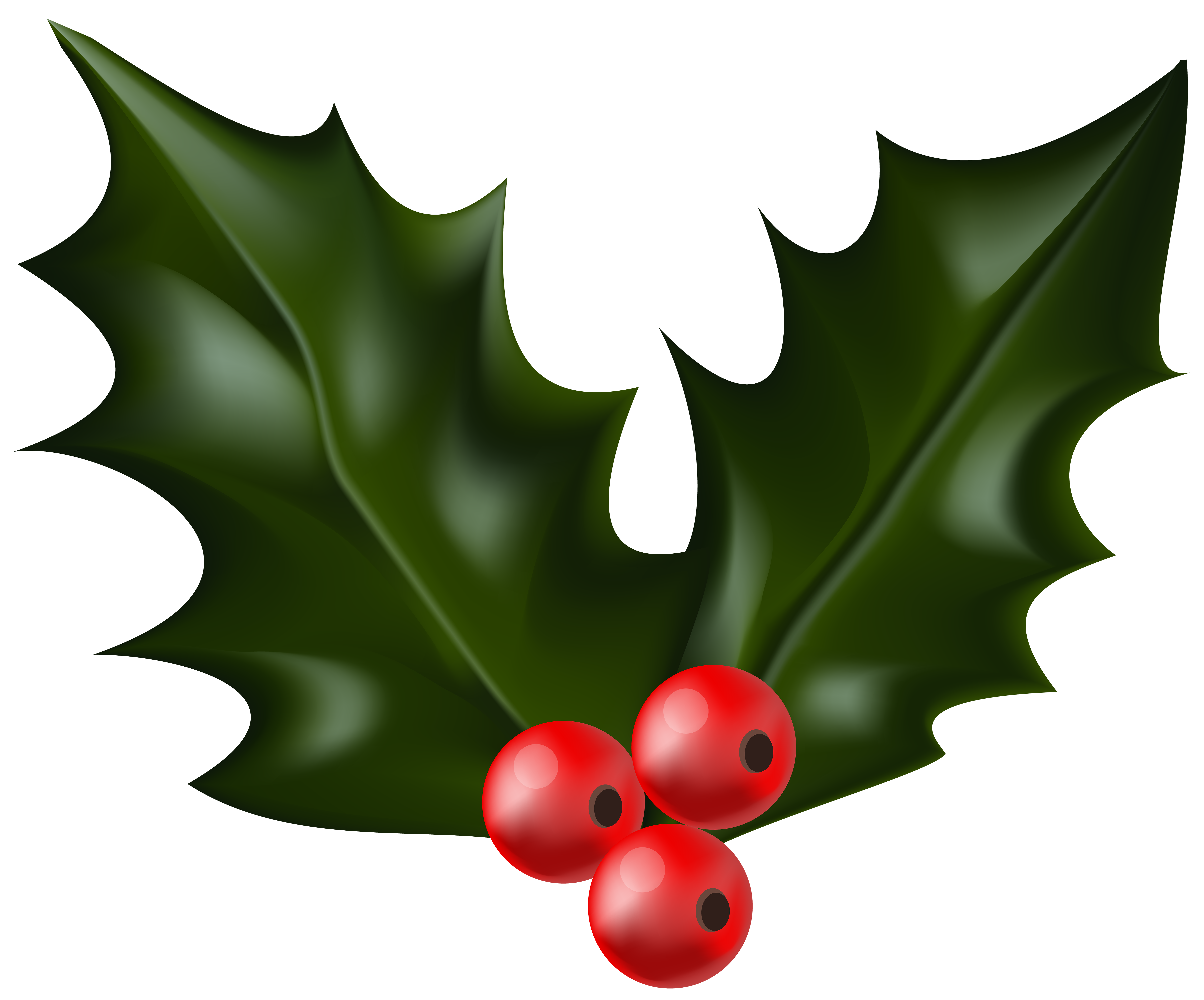 graphic stock Mistletoe png clip art. Christmas holly clipart black and white