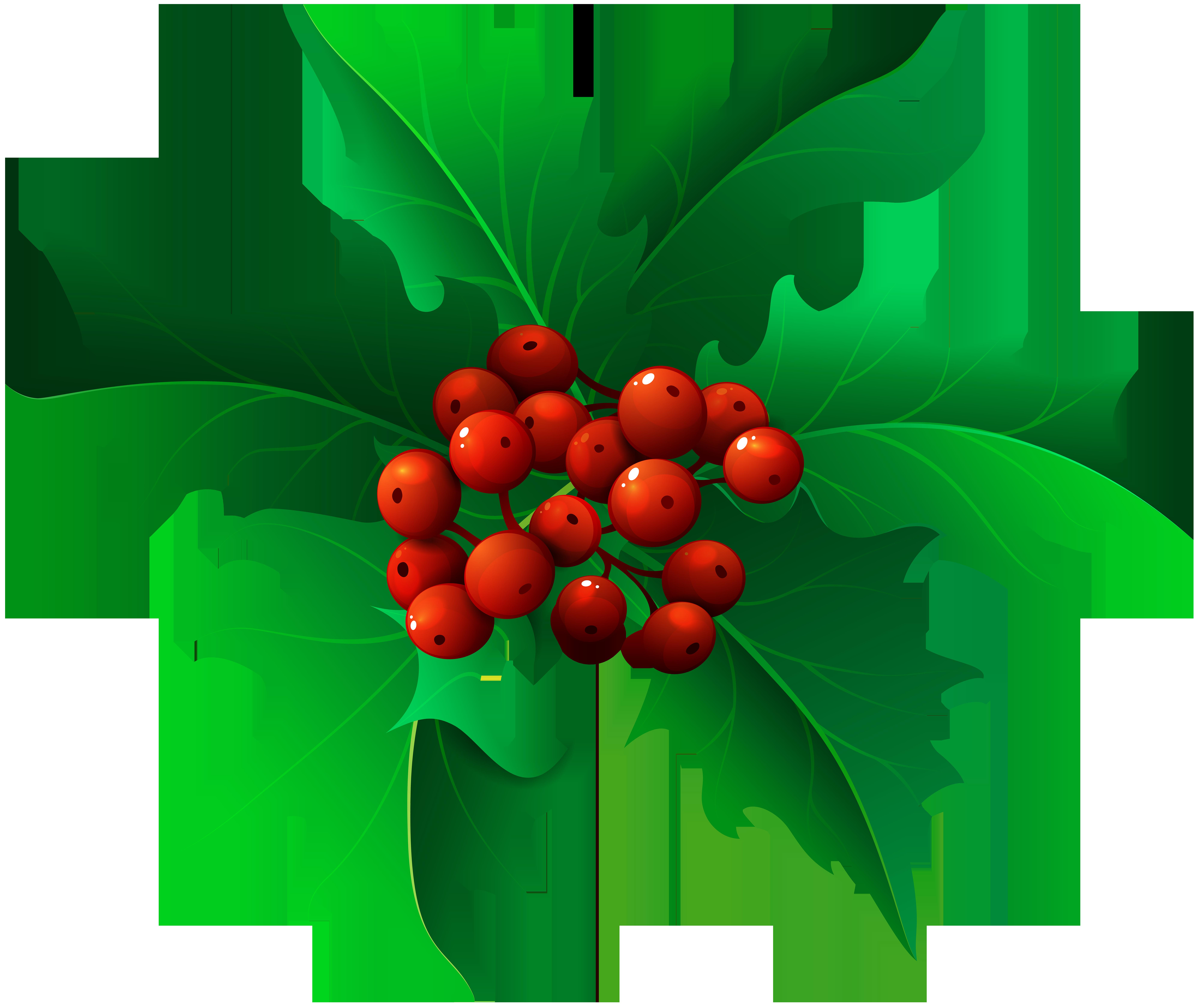 clip art library Mistletoe clipart holly sprig. Christmas transparent png clip.