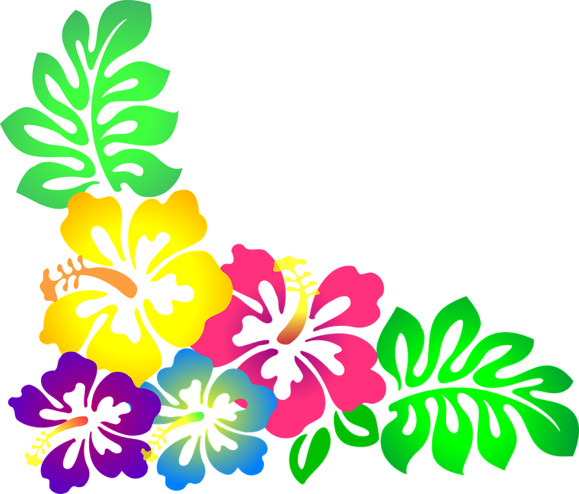 picture stock Pin by irma on. Moana clipart island flower.