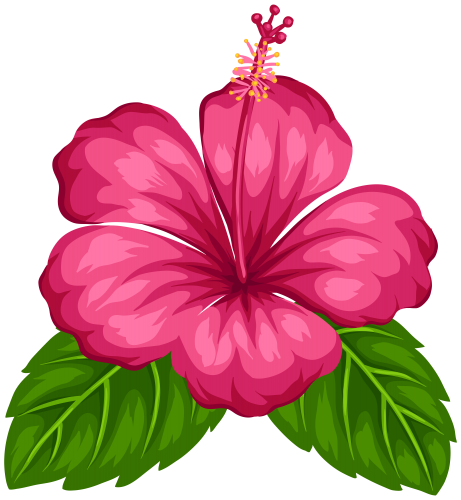 picture free HAWAIIAN ALOHA TROPICAL