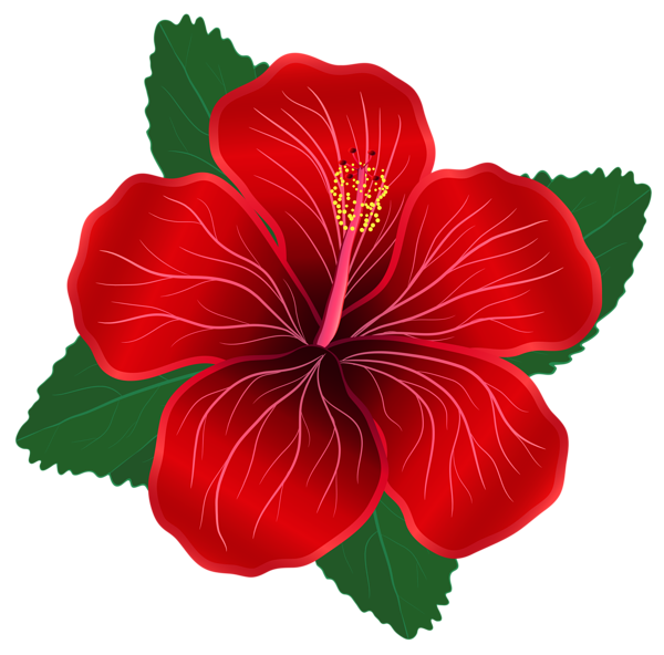 royalty free stock Red Flower PNG Clipart Image