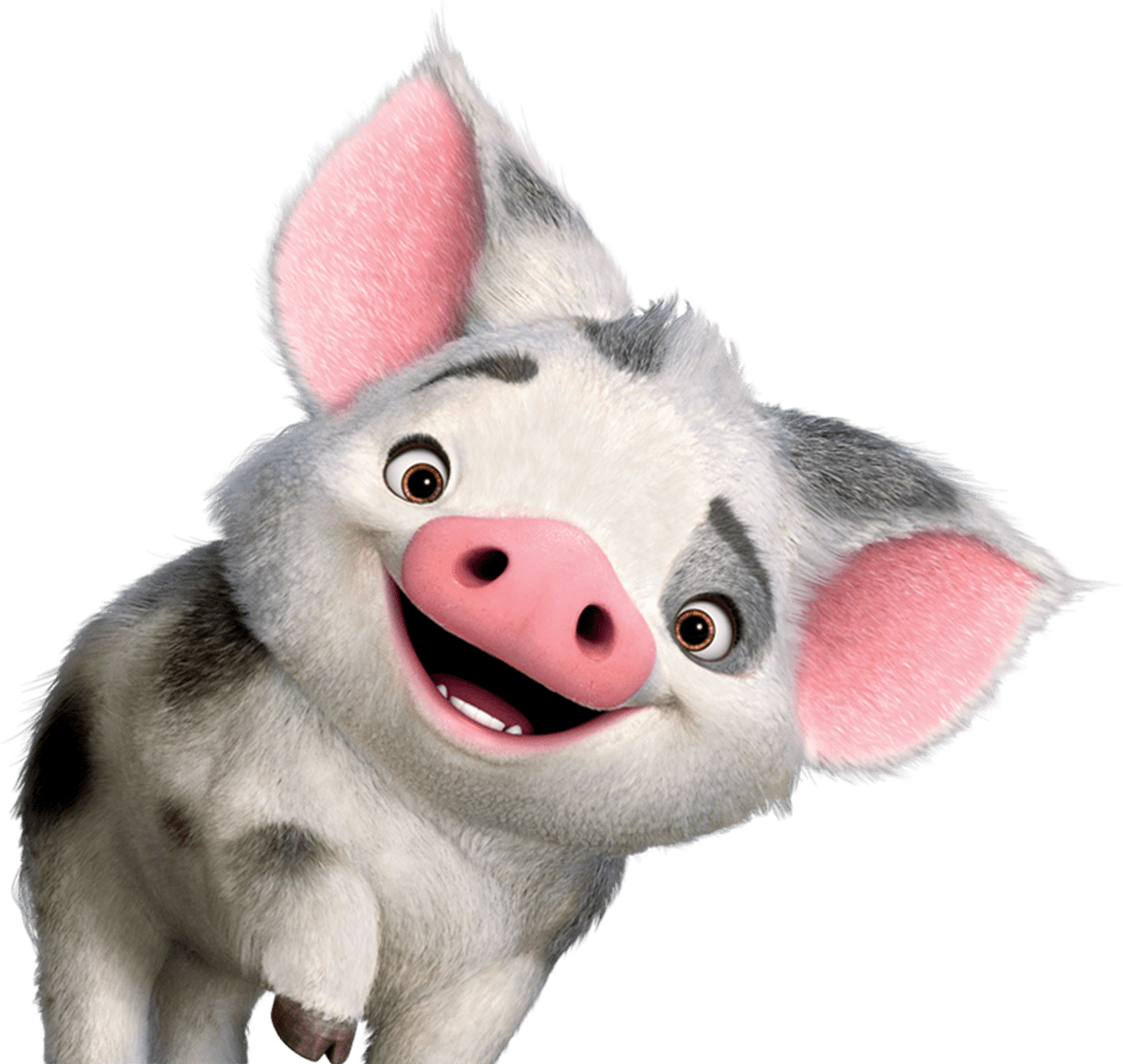clipart free library Moana pig clipart. Pua transparent png stickpng.