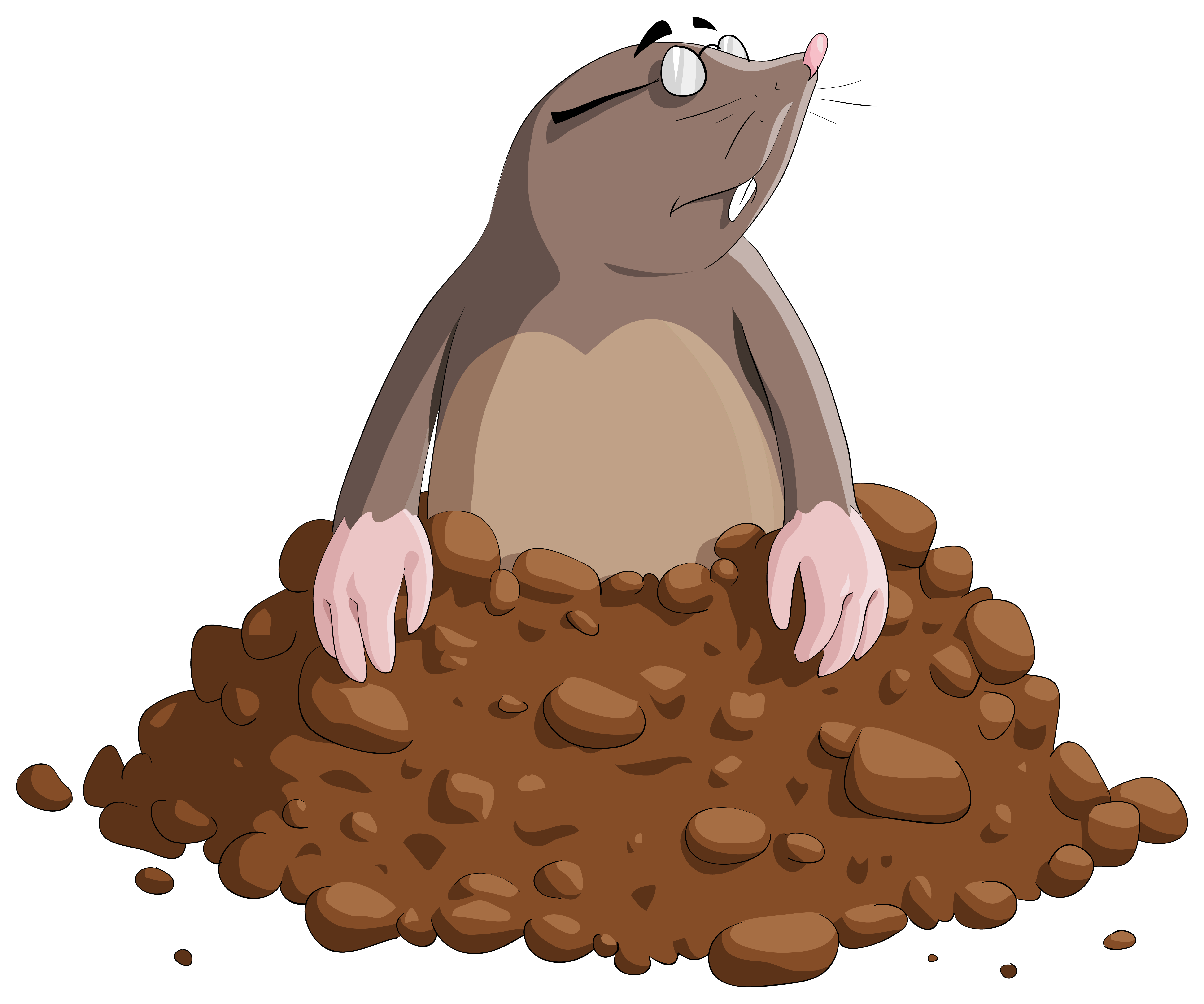 vector Cartoon png image gallery. Mole animal clipart