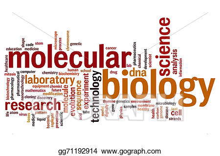 picture download Stock illustration word cloud. Molecular biology clipart.
