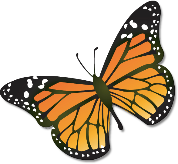 png royalty free download Animated . Monarch clipart.